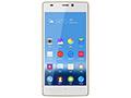 金立ELIFE S5.5L(GN9000L) 手机